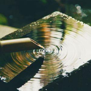 Zen Nature Sounds