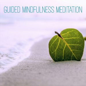 Guided Mindfulness Meditation - Present Moment